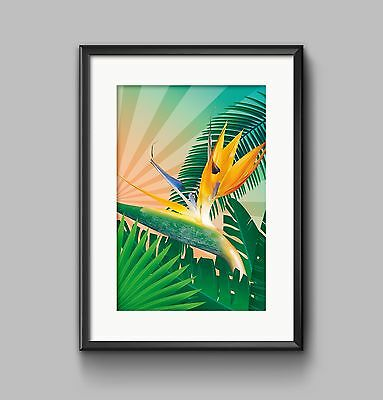 BIRDS OF PARADISE Print PHOTO POSTER A4 or A3 Wall Art HOME DECOR