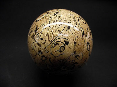 Fossil rock sphere with prehistoric marine creature remains, 73mm dia. 583g