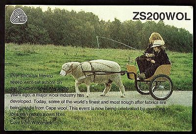 "QSL QSO RADIO CARD ""Cape Wool,Sheep Pulling Cart,ZS200WOL,Woolmark"", (Q2933)"