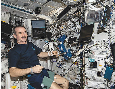 Commander Chris Hadfield Signed Autograph Astronaut Nasa Iss 8X10 Photo Proof #3