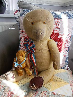 """Hugo + Herbert (Little & Large)"" - 2 Old/Antique War Wounded Bears Needing Love"