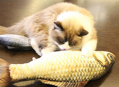 Funny Cat Toy Simulation Fish PP Cotton Padded 20cm Long Pet Dog Sound Toys