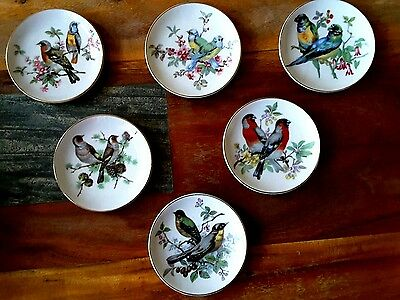 Vintage Hand Painted 6 Miniature Wall Hanging Plates Pairs of Birds Japan