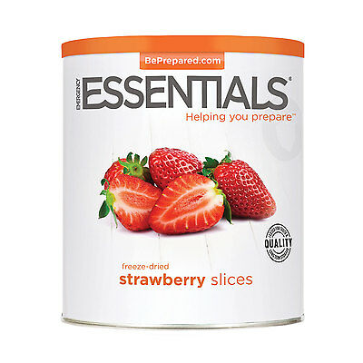 Freeze Dried Strawberry Slices can