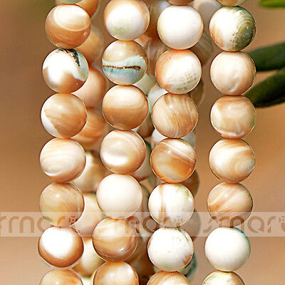 """Natural Trochidae Round Loose Beads 15.5"""" Inches Strand 10 12mm"""
