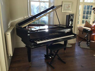 Tesoro Nero -  Black Baby Grand Piano