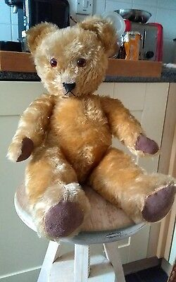 Beautiful Antique Irish Tara Teddy Bear * Rare Teddy Bear*