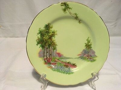 Lovely Vintage Aynsley Small Plate Bluebell Time