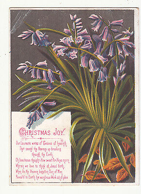 Christmas Joy Our Laureate Writes of Groves Flowers Victorian Card c 1880s