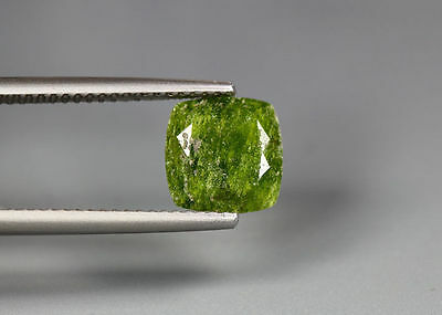 2.48 Cts_Amazing Gem Miracle Collection_100 % Natural Hydro Grossular Garnet