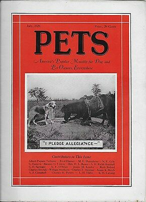 Pets Monthly Dog And Pet Owner Magazine Vintage July 1928 Terhune Illus. Nice!