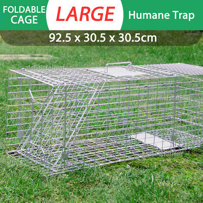 Extra Large Folding Humane Live Animal Trap Cage Possum Fox Rat Cat Rabbit Catch