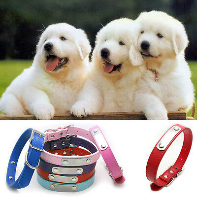 Personalized Puppy Dog Cat PU Leather Adjustable Pet Collar Buckle Neck Strap