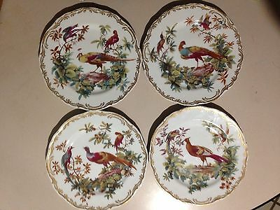 Vintage Andrea by Sadek - EXOTIC BIRDS - Gilded Smithsonian Set Of Four Plates