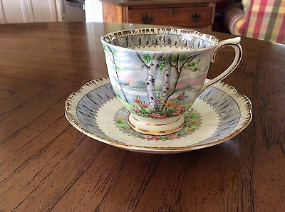 Vintage Antique Tea Cup And Saucer