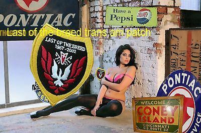 PONTIAC    TRANS AM LAST OF THE BREED  2002  Patch