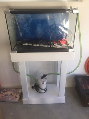 2 foot fish tank with stand accessories heater light filter