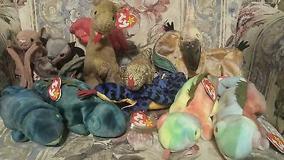 Lot of 10 TY Dinosaur and Lizard  Beanie Babies