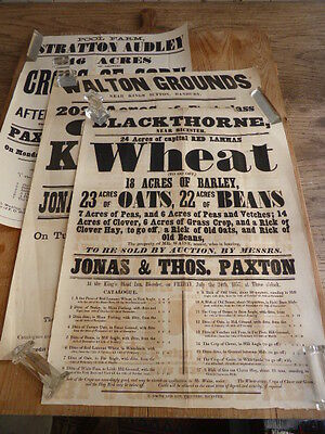 Set of 3 original posters from agricultural auctions dated 1893 1873 & 1857