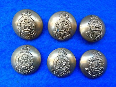 """6 X Wwi/ii Royal Dragoons (1St Dragoons) Cavalry 1""""  Brass Tunic Buttons"""