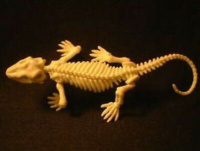 Japan Pose Skeleton Gecko lizard Skeleton mini pvc figurine figure with Joints