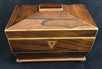 English Tea Caddy George III, Rosewood, Circa 1820