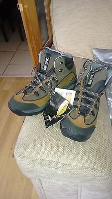 walking boots size 7.5 Uk. Raichle