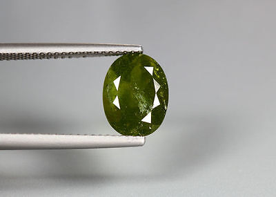 3.05 Cts_Amazing Gem Miracle Collection_100 % Natural Hydro Grossular Garnet