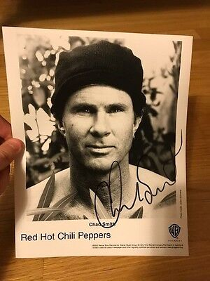 Red Hot Chili Peppers - Chad Smith Press Photo! - SIGNED!! - Primus - Nirvana