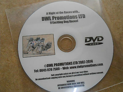 Greyhound Racing Dvd - 9 Dog Races On This Dvd - 8 Runners In Each Race - Dwl