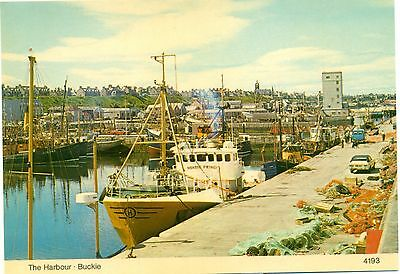 The Harbour Buckie Banffshire unused postcard