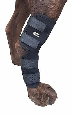 Knee Brace For Dogs Hock Protector ACL Therapeutic Dog Rear Leg 4 Straps LARGE