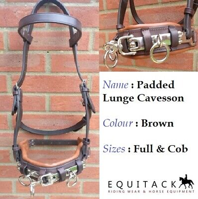 Bargain Quality Soft Horse Padded Leather Lunge Cavesson Bit Brown Full & Cob