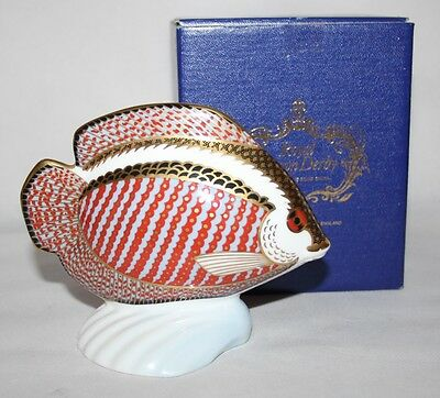 Royal Crown Derby - Tropical Fish Gourami Paperweight - Gold Stopper - Box/vgc