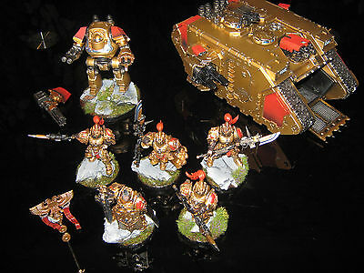 pro painted WARHAMMER 40k ADEPTUS CUSTODES ARMY. magnetic parts and codex.