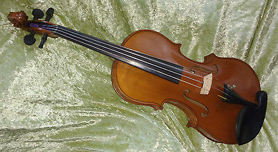 4/4 Violin Made in Germany Amati Copy
