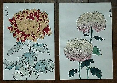 2 Japanese Original Woodblock Print - One Hundred Chrysanthemums Series - A1