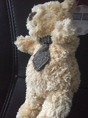 Bnwt Small New M&s Marks Spencer Brown Tie Teddy Bear Stitched Feet 7283 482