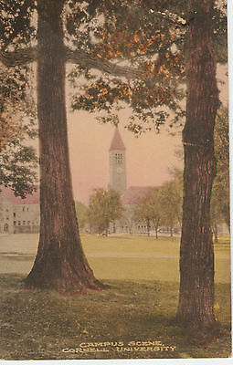 Vintage Hand Colored Postcard - Cornell University Campus Scene