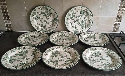BHS Country Vine Dinner Plates Set Of 8