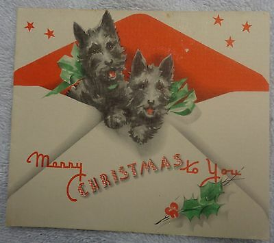 Scotty Scottie Dogs Hanging Out of an Envelope  Christmas Card
