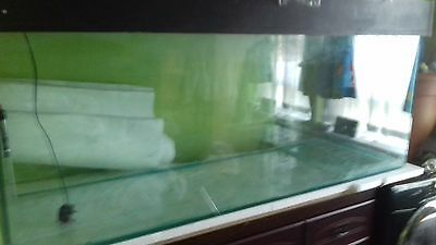 5ft fish tank by 2 by 18 inches