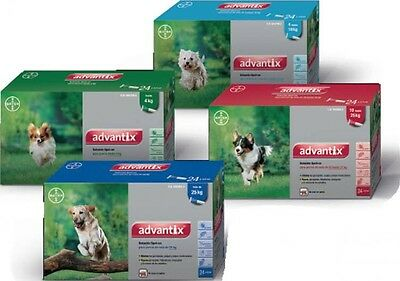 Advantix Spot-On Perros (4-10 Kg) - 24 Pipetas Antiparasitarias