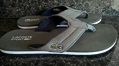 Lacoste Flip Flops Size UK 8 New Without Tags  EU 42 Grey Sandals