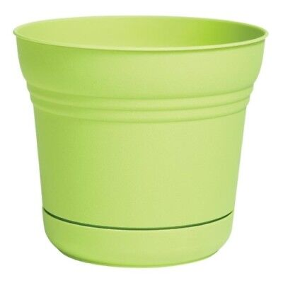 Saturn Pot Honey Dew 10""