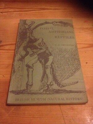 1st Edition 1954 Fossil Amphibians And Reptiles By W.E Swinton