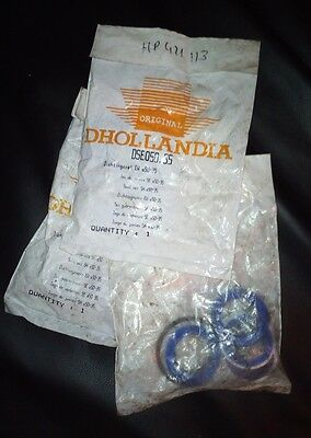 Kit de joints de vérin d'origine Dhollandia DSE050.35
