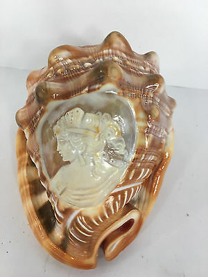 "SHELL CAMEO ""Venus de Milo "" on Vintage Helmet Shell carved in Italy"