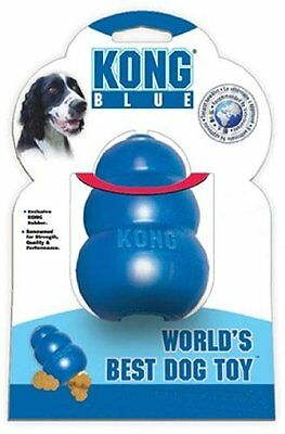 Kong Blue, Medium, Premium Service, Fast Dispatch.