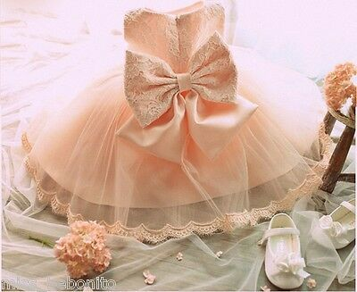 Delilah Flower Baby Girl Formal Lace Dress Gown Bridesmaid Party Birthday Gift